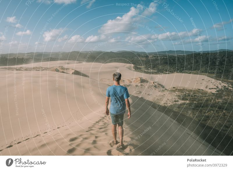 #AS# Power of Sand Desert duene Wind Waves Beach Beach dune Vacation & Travel Ocean coast Nature desert landscape desert sand Desert road dune landscape Sky