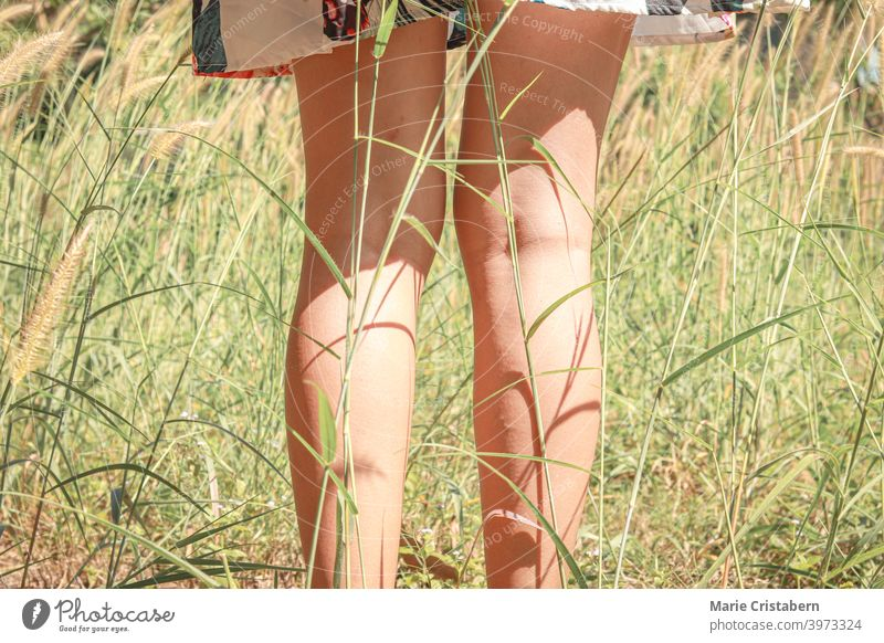 Low section of a woman standing among the swaying grasses showing concept of summer and spring mindfulness back to nature delicate dainty sexy legs girl dress