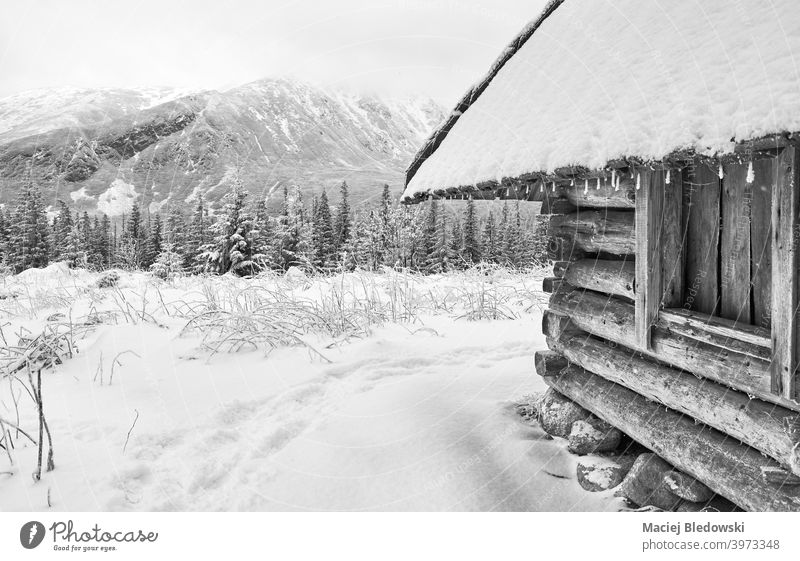 Black and white picture of wooden hut in mountains during snowy winter. landscape black shelter snowfall Tatra valley scenic Dolina Gasienicowa frost cold