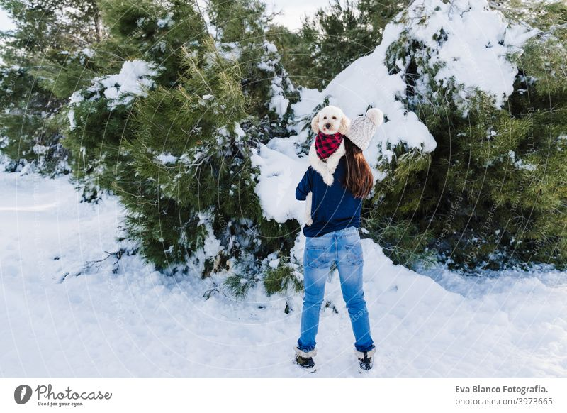 beautiful woman in snowy mountain holding cute poodle dog on shoulder. Dog wearing plaid bandana. winter season. nature and pets blanket travel owner love