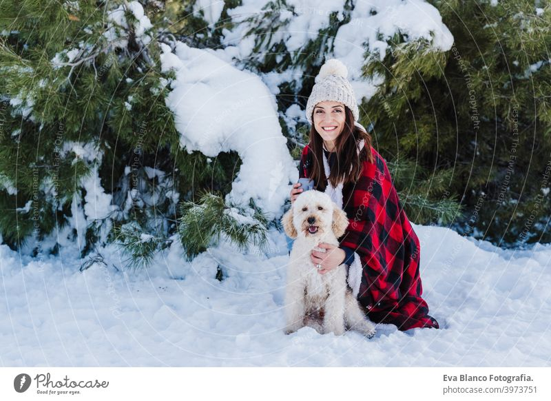 beautiful woman in snowy mountain Holding cute poodle dog in arms wrapped in plaid blanket. winter season. nature and pets travel owner love together back view