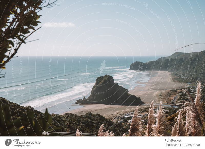 #AS# Piha piha Rock Waves Surfers Paradise Pampas grass Low tide especially coast Water Surfing Beach Ocean Surf Waves seascape Seashore Horizon Exceptional