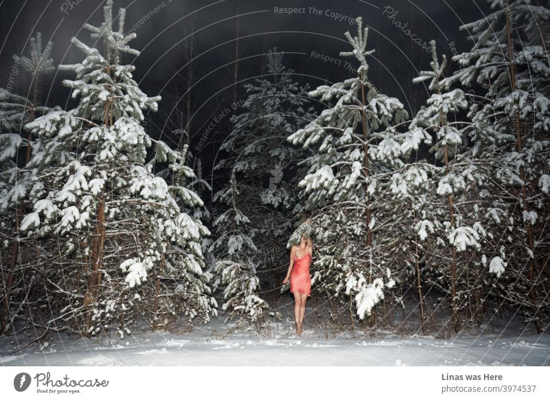 It's still cold outside and these woods are covered with white snow. Nevertheless, this gorgeous female model doesn't care if it's a blizzard out there. Bare feet and barely dressed (with pink skirt only) girl is enjoying the feeling of winter.