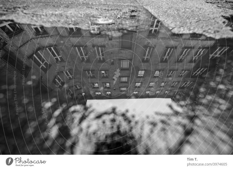 a puddle on a backyard in Prenzlauer Berg Town Berlin Backyard Courtyard Deserted Downtown Day House (Residential Structure) Capital city Old town Exterior shot