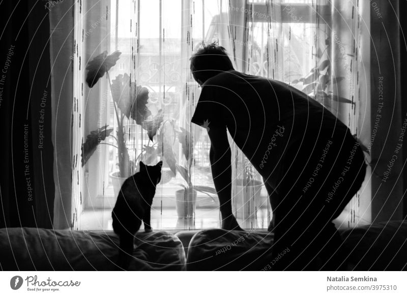 Black and white photo. Dark silhouettes of man and cat which are standing in similar postures on couch and looking out the window. pet Silhouette Shadow indoor