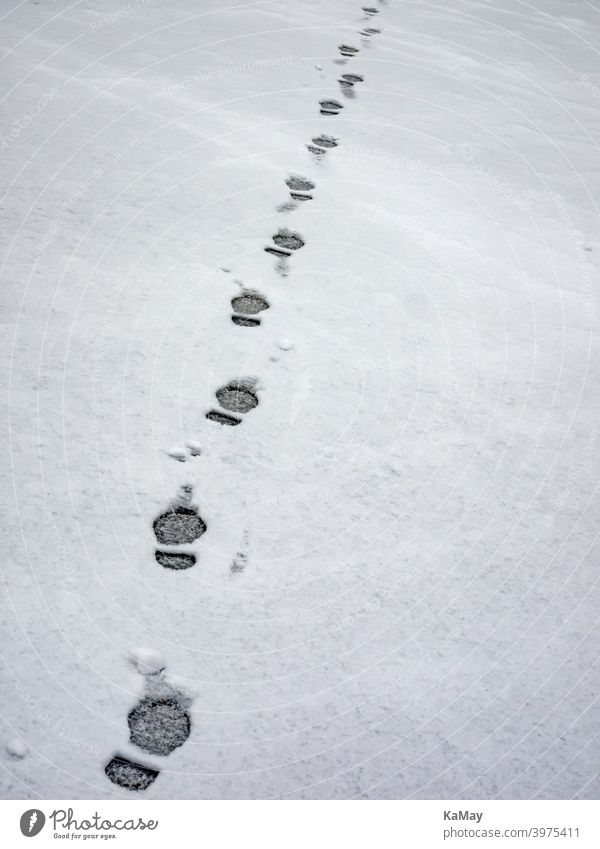 Footprints of a man in the snow Snow Tracks footprints Steps Imprint Hiking on one's own White Cold Frost Winter wide Frozen trace Ice Empty off feet Season
