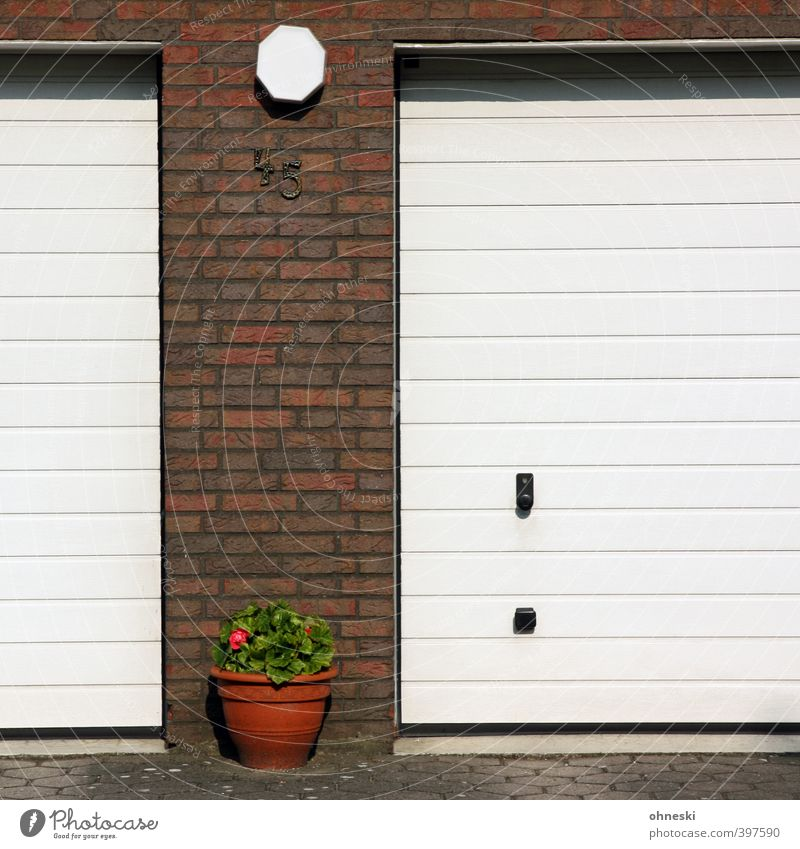 summer holidays Flower Building Garage Wall (barrier) Wall (building) Facade Garage door Flowerpot Digits and numbers Idyll Living or residing Colour photo