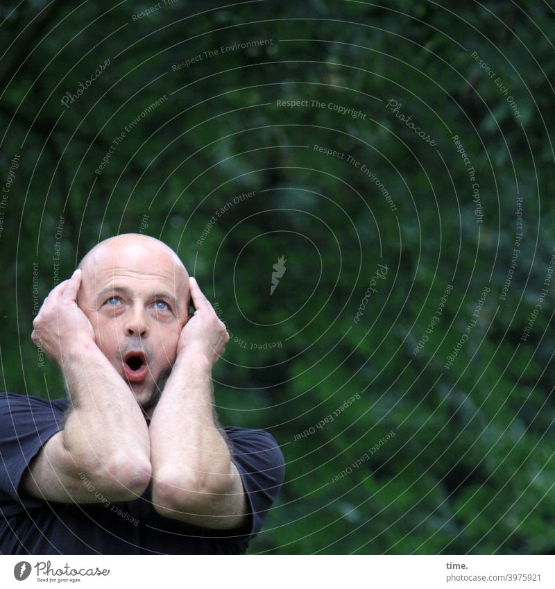 The surprise Man astonishment Arm stop portrait Park Green Hedge Surprise astonished Bald or shaved head Exclamation Upward