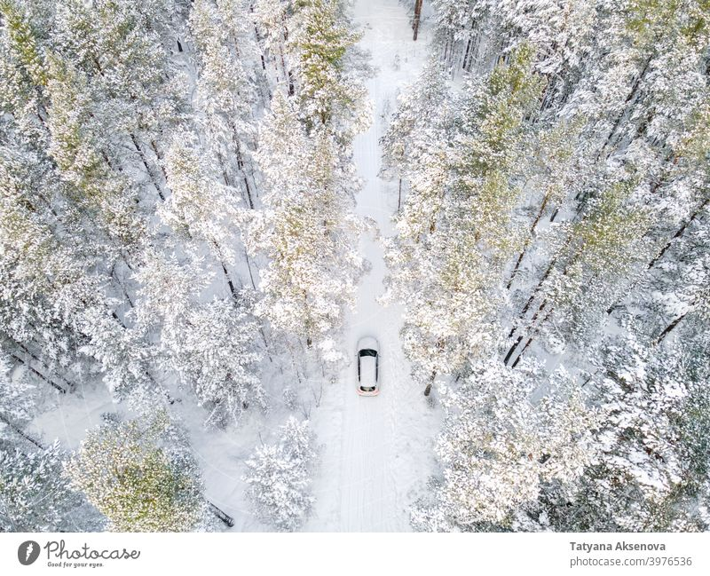 White car in snowy forest from above winter nature season tree aerial cold weather frost landscape view white wood outdoor ice background drone environment
