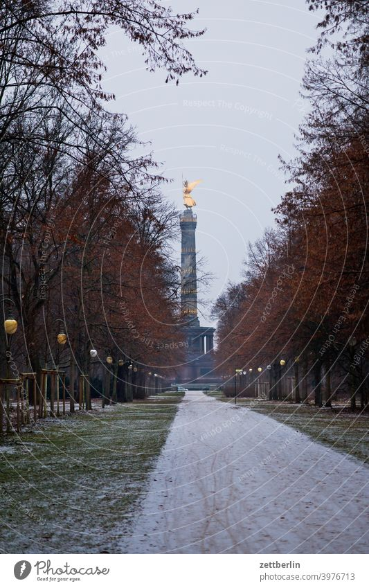 Victory Column in January Tree Berlin leaf gold Monument Germany Twilight else Closing time Figure Gold Goldelse victory statue big star Capital city Sky