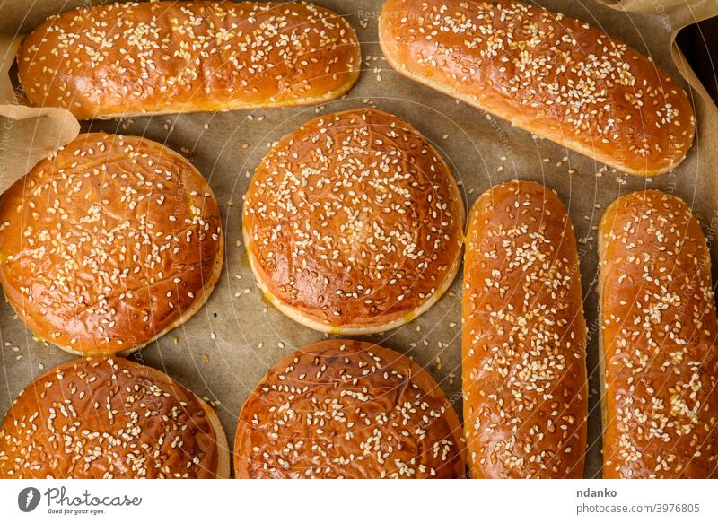 baked sesame buns on brown parchment paper, ingredient for a hamburger cheeseburger classic closeup crust delicious dough eating american bakery black bread