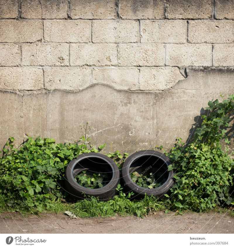 You're gonna have to take a two-stick. Foliage plant Wall (barrier) Wall (building) Facade Street Lanes & trails Tire Stone Concrete Plastic Line Movement