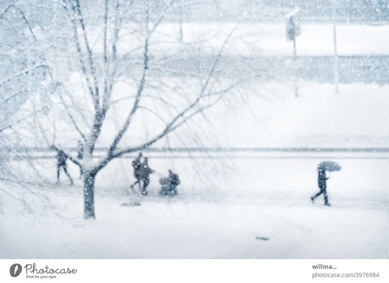 urban winter Winter Snow people Street Going rush Family Tree snow-covered Footpath Cold Winter mood Winter's day Walking To go for a walk