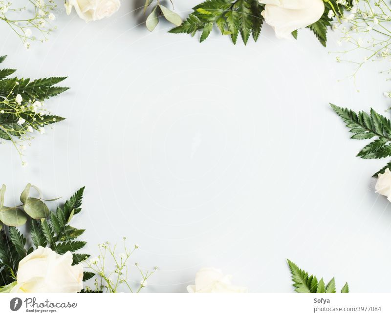 Floral arrangement frame with white roses and fern mockup anniversary valentine flat lay holiday background flowers floral trendy bunch greeting card gray