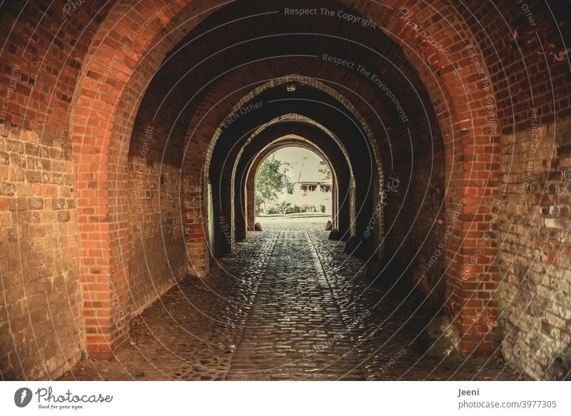 Old historical brick passageway | courtyard of a cathedral | lane Historic stonewalled Wall (barrier) Brick Passage Bricks Manmade structures Interior courtyard
