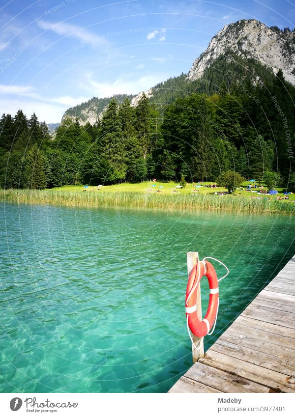 Turquoise green water in the summer sunshine at the Alpseebad Hohenschwangau in Schwangau near Füssen in the Allgäu in the Free State of Bavaria alpine lake