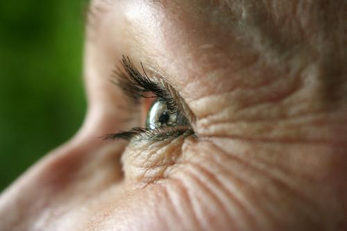 crinkles around the eye Woman Eyes Eyelash Looking iris Iris Senses Detail farsighted nearsighted Eye colour macro Eyelid Vision optical Eye-catcher naturally