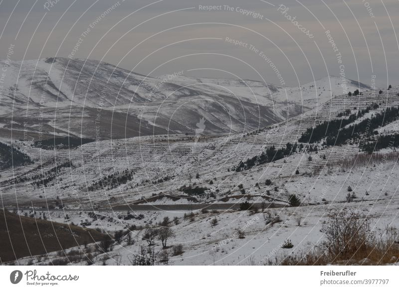 Mountainous landscape with fresh snow covered steppe-like botany partly wooded wide view into the country on which a road leads Calm Deserted Exterior shot