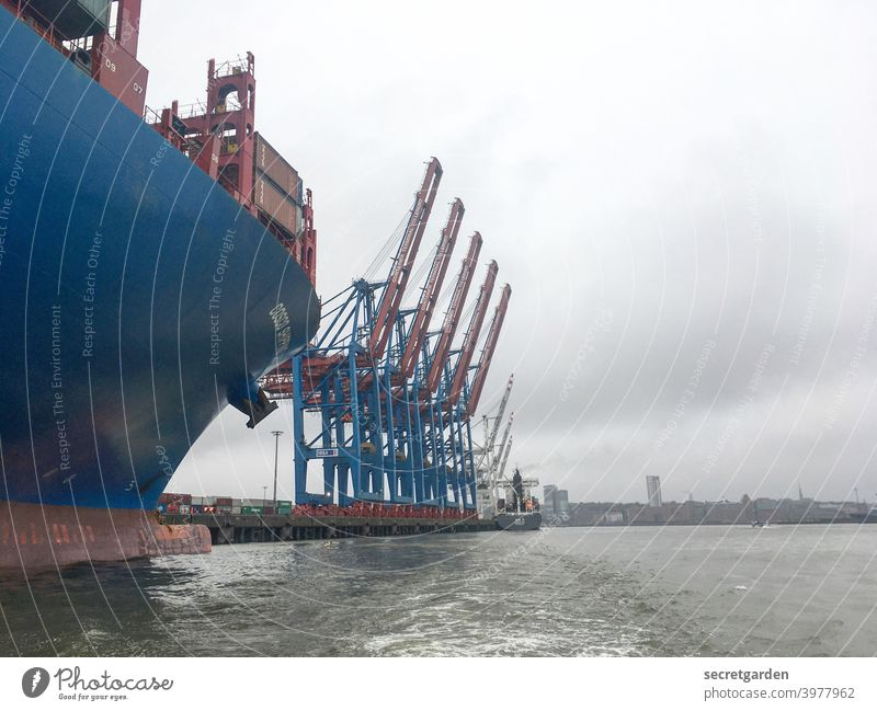 Cornern on the Elbe. Hamburg Harbour Crane Water Sky Bad weather Clouds Navigation ship Container ship Logistics Port City Exterior shot Colour photo