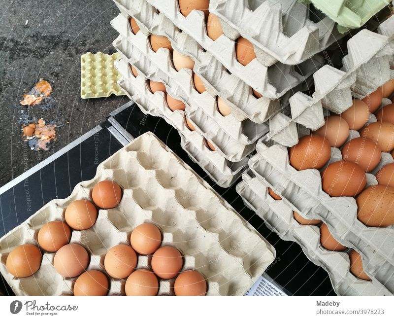 Brown eggs from organic farmers in large cardboard boxes at the weekly market in Detmold in the Lippe region near the Teutoburg Forest in East Westphalia-Lippe