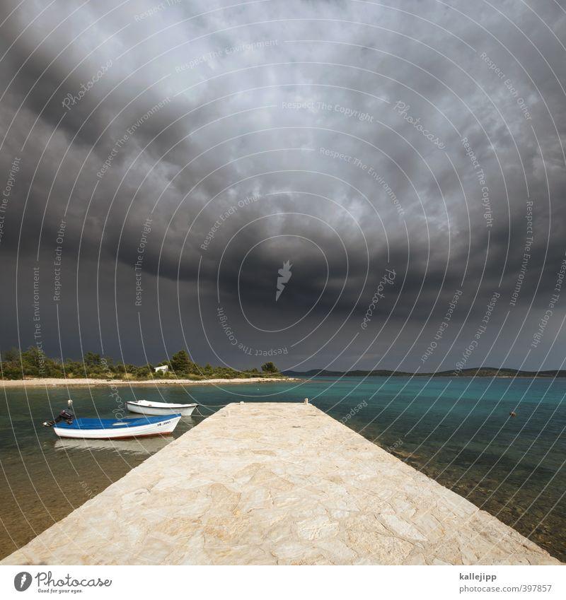 Sky Nature Water Plant Summer Ocean Landscape Clouds Animal Environment Dark Coast Stone Watercraft Horizon Air
