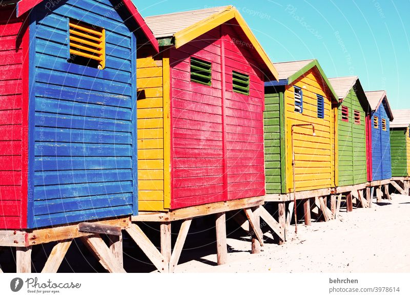 red blue yellow red green red blue green famous Art Architecture Wooden house variegated Changing cabine Muizenburg beach Sunlight Contrast Shadow Light
