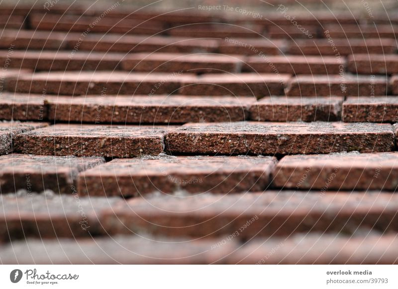 roof tiles Roofing tile House (Residential Structure) Red Architecture depth blur