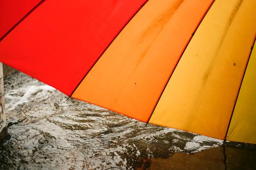 close up of colorful Umbrella on rainy day umbrella weather season wet outdoor water drop background nature protection raindrop fall storm outside spring safety