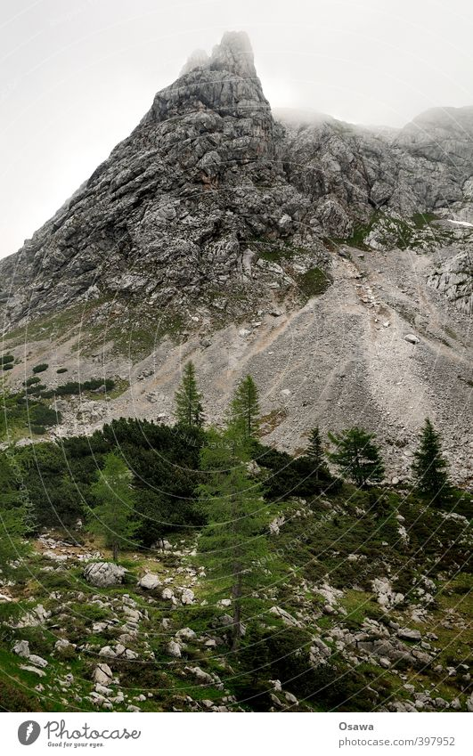 Nature Vacation & Travel Plant Tree Landscape Environment Mountain Rock Authentic Tourism Hiking Trip Adventure Peak Alps Hill