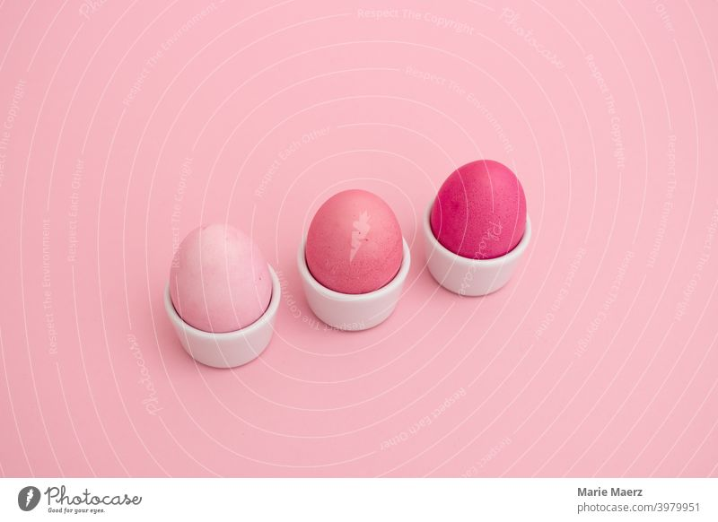 Painted eggs in bright pink tones in an egg cup row Breakfast Close-up Colour colored colourful concept Cute Design differently Easter Easter eggs Eating