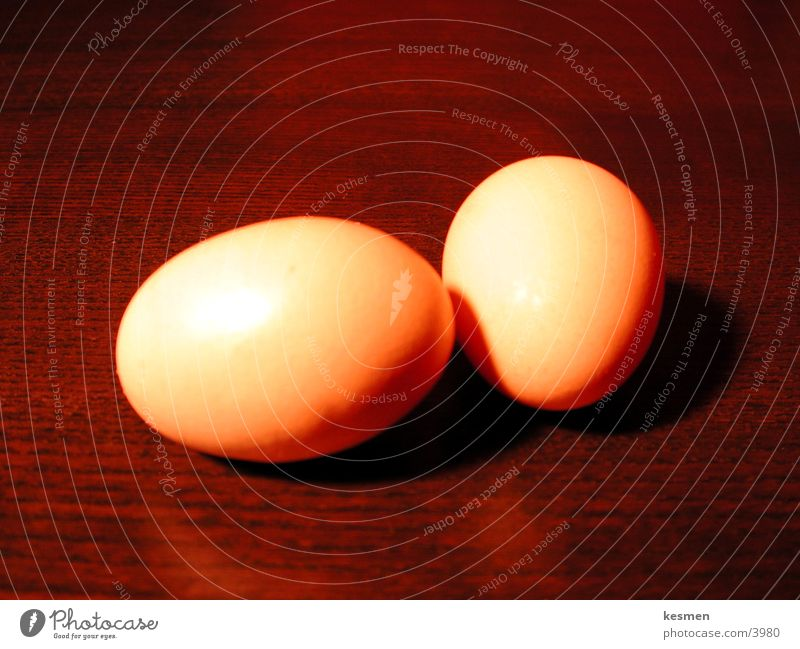 Nutrition Egg
