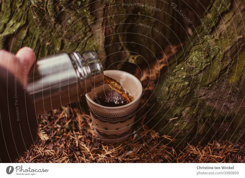 Tea break on the way. A cup stands on the forest floor, this is covered with brown needles. Tea / coffee is poured from a silvery thermos bottle. tea break