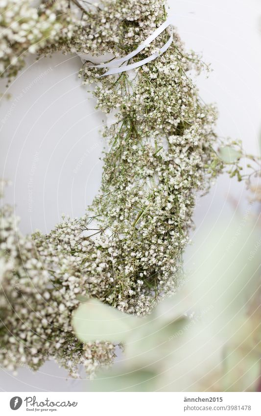 A half wreath of white baby's breath and in the front right you can see blurred eucalyptus Baby's-breath Dried flower Wreath Wedding Flower Blossom Colour photo