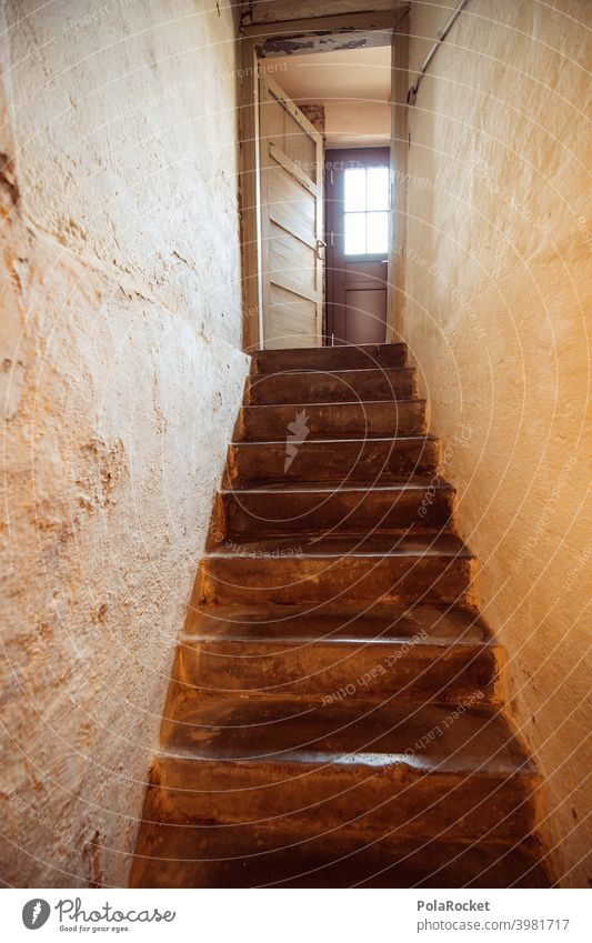 #A0# Cellar stairs with view of cellar door Cellar door Cellar wall cellar compartment Existing flat Stairs Dark Shadow rented apartment Old building