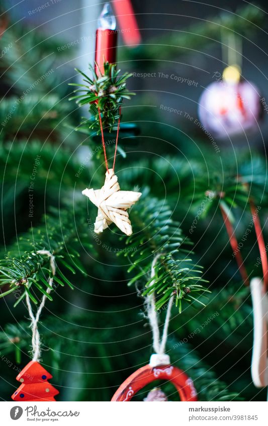 Christmas tree decoration Child Infancy christmas ball Christmas bell Christmas gift christmas party Christmassy colourful embellish Decoration English holly