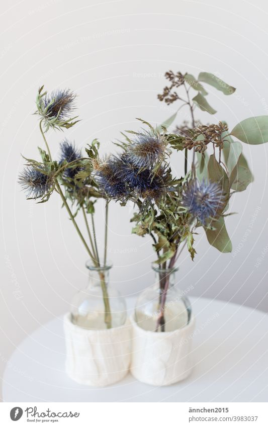 Two small glass vases stand on a small white side table and are filled with dried branches/flowers Vases Dried flowers Thistle eucalyptus Plant Nature Green