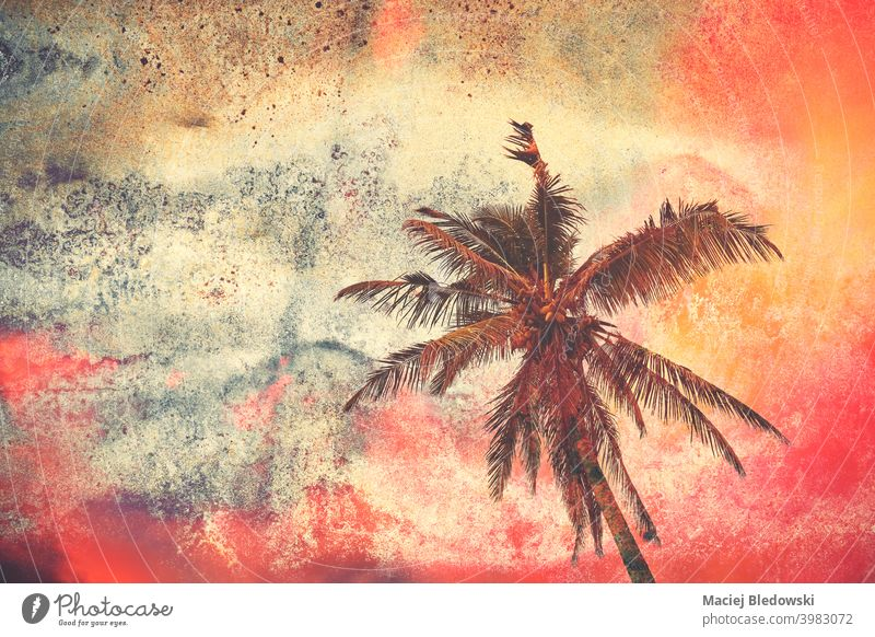 Grunge paper background with silhouette of a palm tree at colorful sunset. grunge retro vintage wallpaper texture rusty sky summer orange nature travel vacation