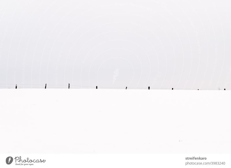 Pasture fence in the snow, reduced to the essentials Fence Winter Snow grey sky Cold Sky Frost Deserted Nature Exterior shot Field White Environment Day