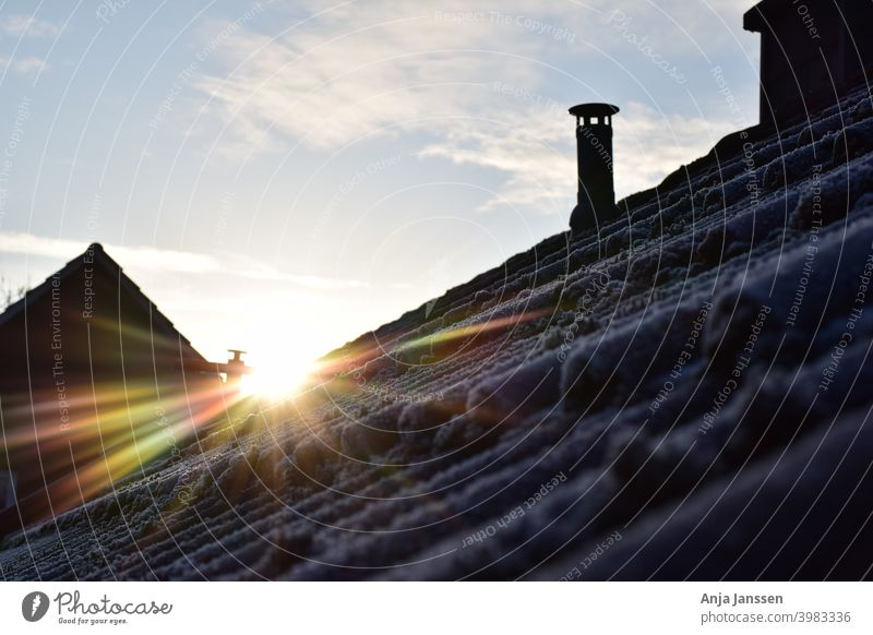 Sunrise over a frozen roof with moss ice white sky blue clouds day sun sunshine house home city settlement housing scheme outside outdoors cold winter growth