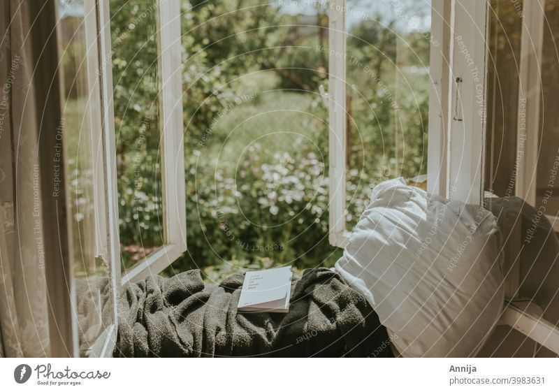 Morning read morning reading book window garden country country living farm barn Old Reading Education Literature Novel Library Study