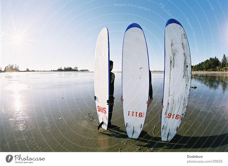 Chesterman's Human being Ocean Beach Coast Surfing Canada Surfer Aquatics Tofino Pacific Ocean Surfboard Vancouver Island West Coast