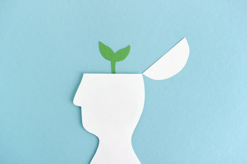 Let thoughts grow   Plant grows from head silhouette Growth Development brain Science & Research Academic studies illustration Illustration paper cut waxing