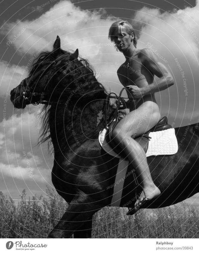 Man Nature Beautiful Naked Power Wind Horse Weather