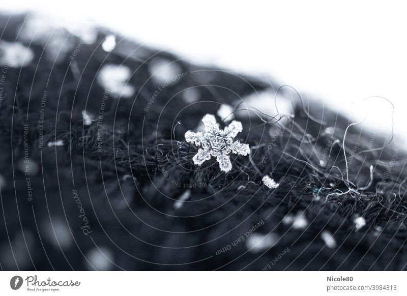 Snowflake on black knit Snowflake on fabric Winter Cold Ice Exterior shot Snowfall Frost Colour photo Delicate Fragile Ice crystal Deserted
