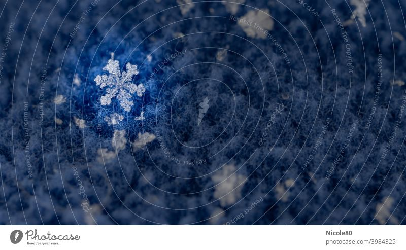 Snowflake on blue fleece with spotlight Snowflake on fabric Fleece Winter Cold Ice Exterior shot Snowfall Frost Colour photo Blue Delicate Fragile Ice crystal