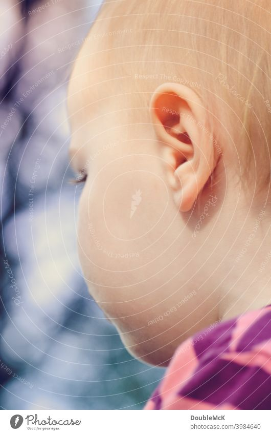 The lateral face of a toddler Toddler Girl Face Infancy Human being 1 1 - 3 years Colour photo Exterior shot Day Looking away Shallow depth of field Feminine