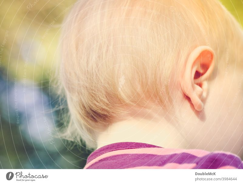 The back of the head of a toddler Toddler Girl Infancy Human being 1 1 - 3 years Colour photo Exterior shot Day Looking away Shallow depth of field Feminine