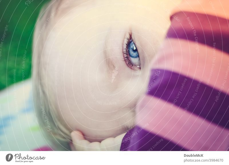 Close up of a toddler lying on a picnic blanket Toddler Girl Face Infancy Human being 1 1 - 3 years Colour photo Exterior shot Day Shallow depth of field