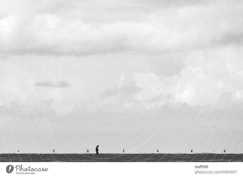 a man alone on the mudflats at low tide Human being 1 Lonely Loneliness Silence seek solitude Mud flats Walk along the tideland Tidal flat walkers
