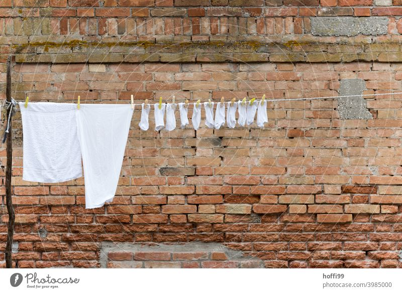 White laundry on a clothesline in front of an old brick wall in the historic old town of Venice Stockings T-shirt Clothes peg Laundry Hang Fresh Clean Washing
